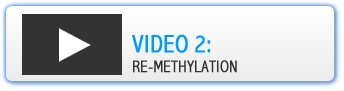 Vid 2 Re-Methylation On Page Button