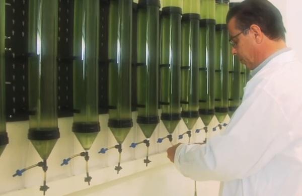 tube testing valves